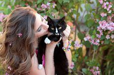 5 lugares donde puedes encontrar a tu gato