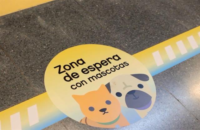 Gatos y perros, viajan en subte los fines de semana en Buenos Aires…