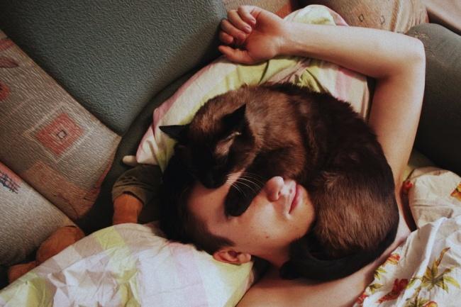 ¿ Por qué mi gato me despierta en la madrugada?¿
