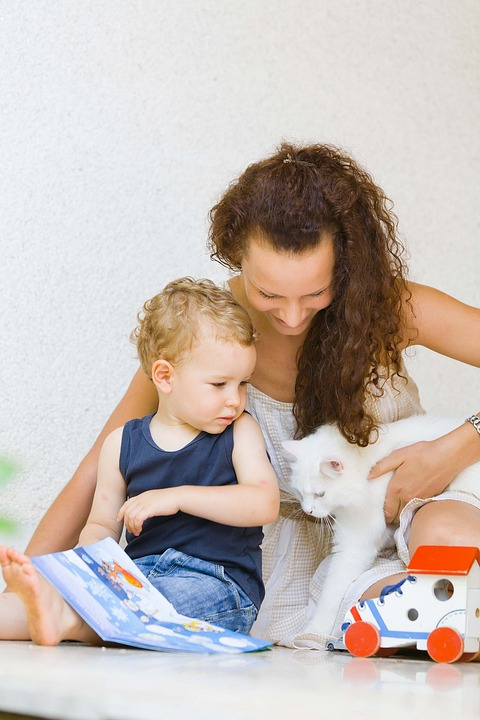 Gatos, embarazos y Toxoplasmosis