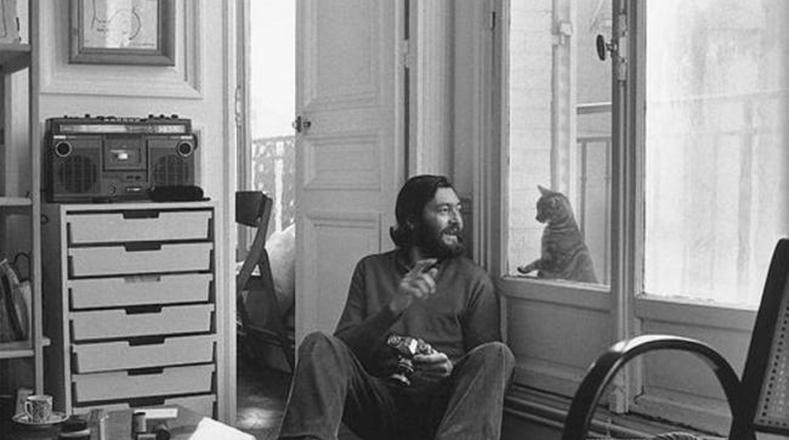 Cinco escritores famosos que tuvieron gatos….