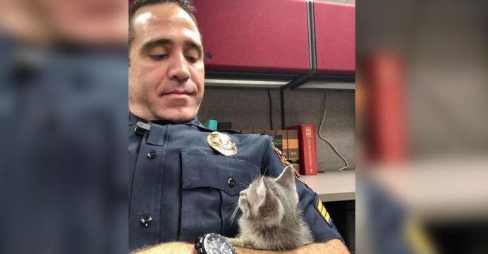 Un policía adopta la gatita que andaba abandonada en la calle…